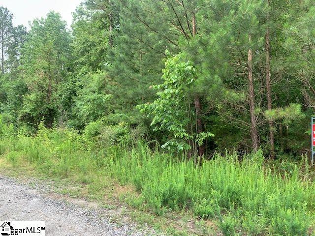 00 Wilson Creek Iva, SC 29655-7320
