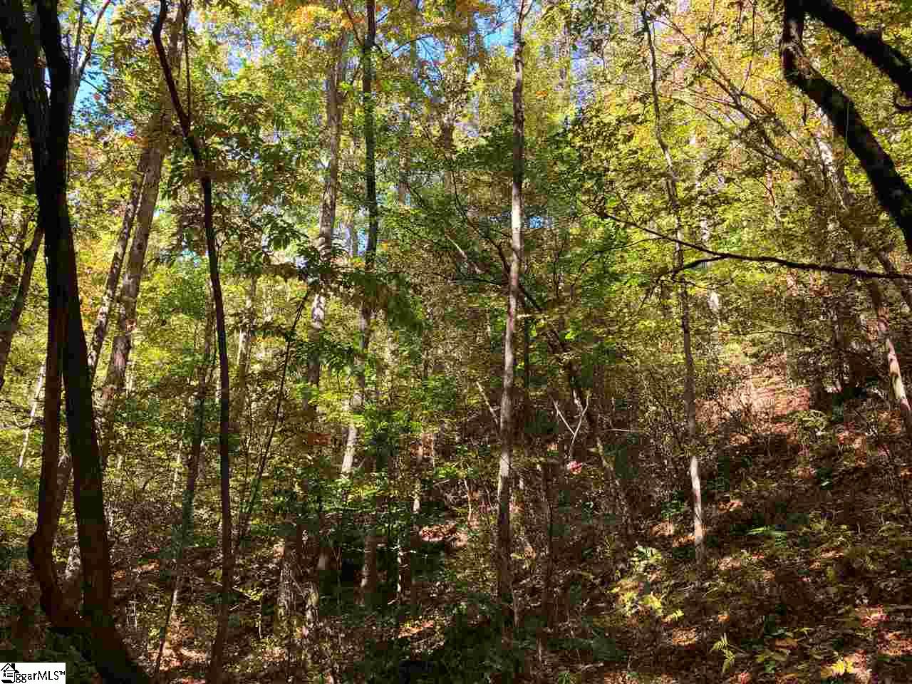 00 Well Mountain Road Westminster, SC 29692