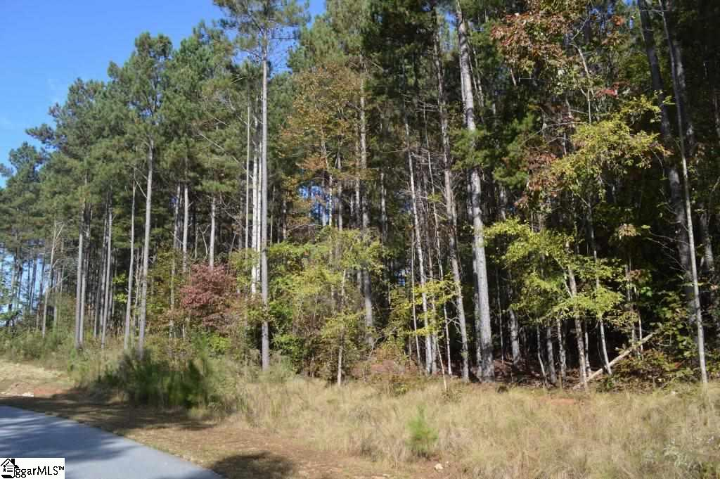 Peninsula Pines Drive West Union, SC 29696