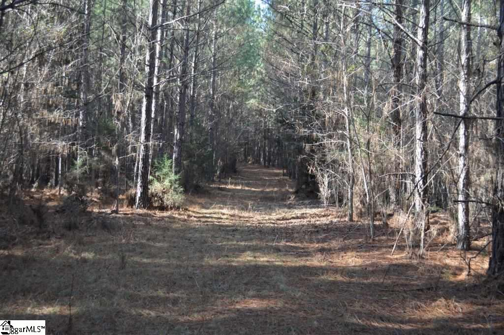 00 Terrapin Road Union, SC 29379