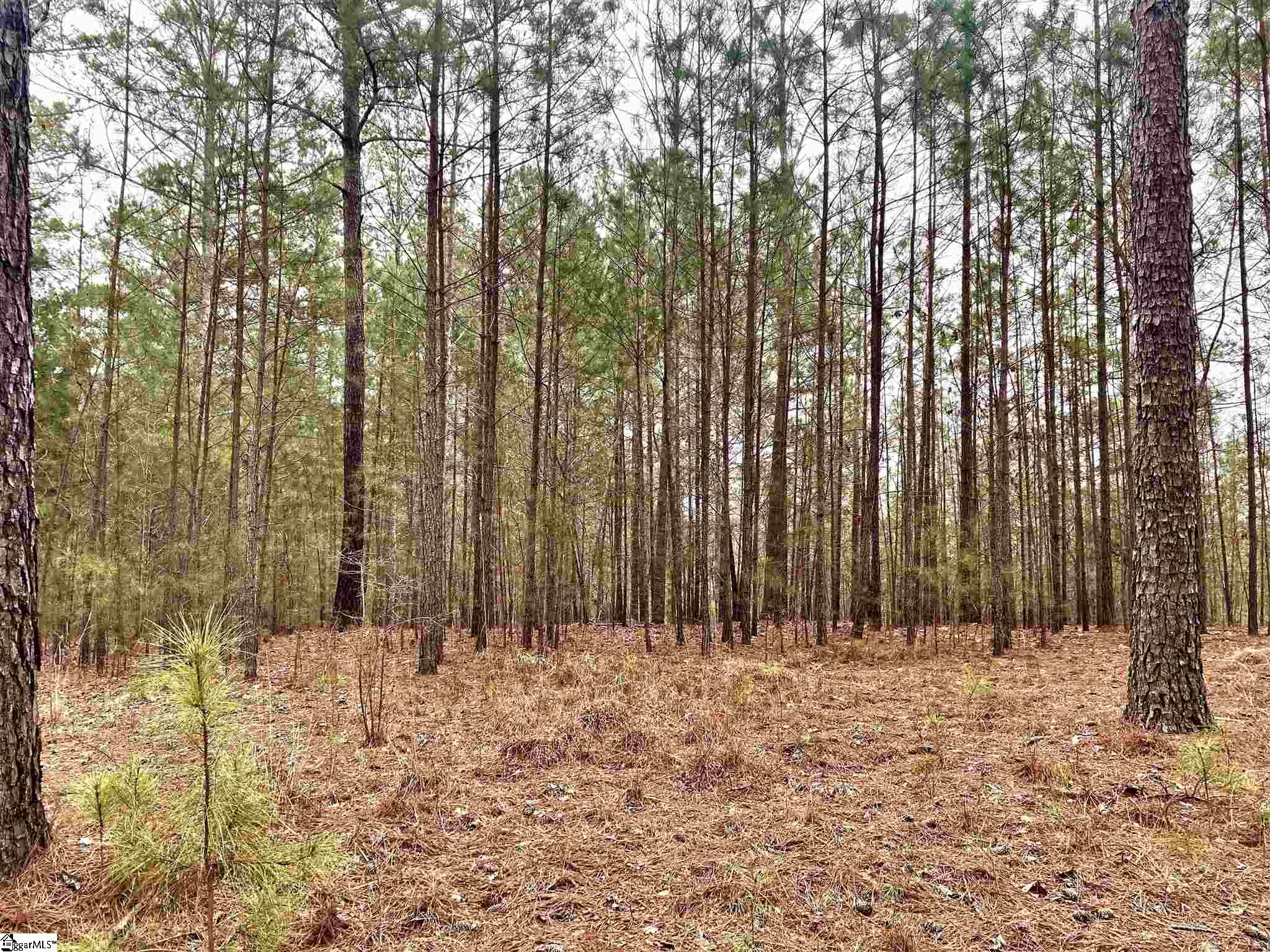 28 Spring Cove Way Six Mile, SC 29682