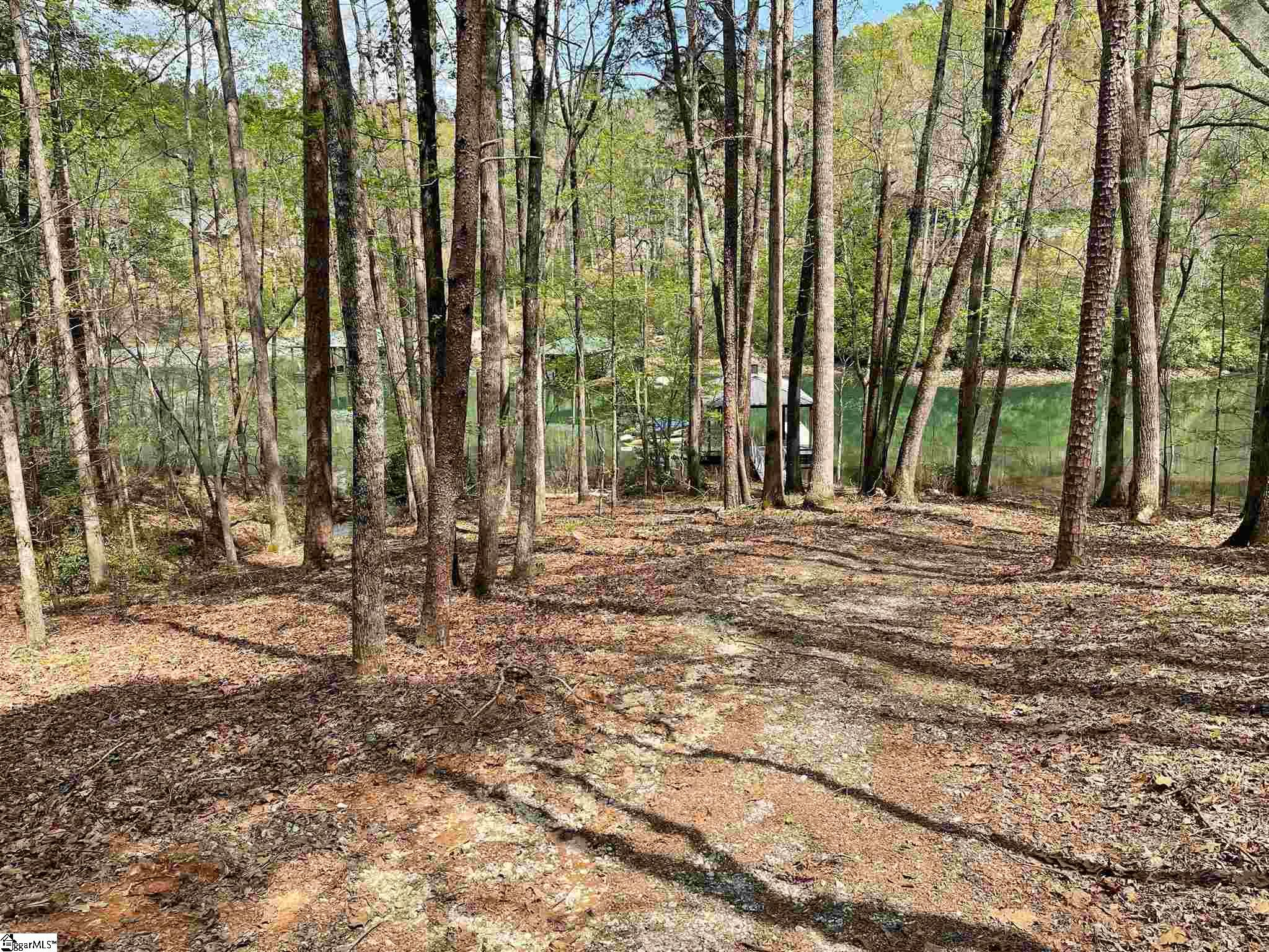 Gentle sloping large parcel waterfront lot located in quiet private cove with covered dock.  This large 2+ acre lot offers easy access and level to gentle building site optimum for low cost construction.  Featuring a winding and charming entrance driveway leading to a private build site with short easy walk to the waterfront and dock.  Enjoy quiet family time and calm water with quick and easy access to the larger main channel and nearby Springs Beach Club and other lake sites.  Covered dock in excellent shape.  Located on the first street inside main Springs gate providing easy access and egress to amenities and local towns. 15 minutes to Clemson.