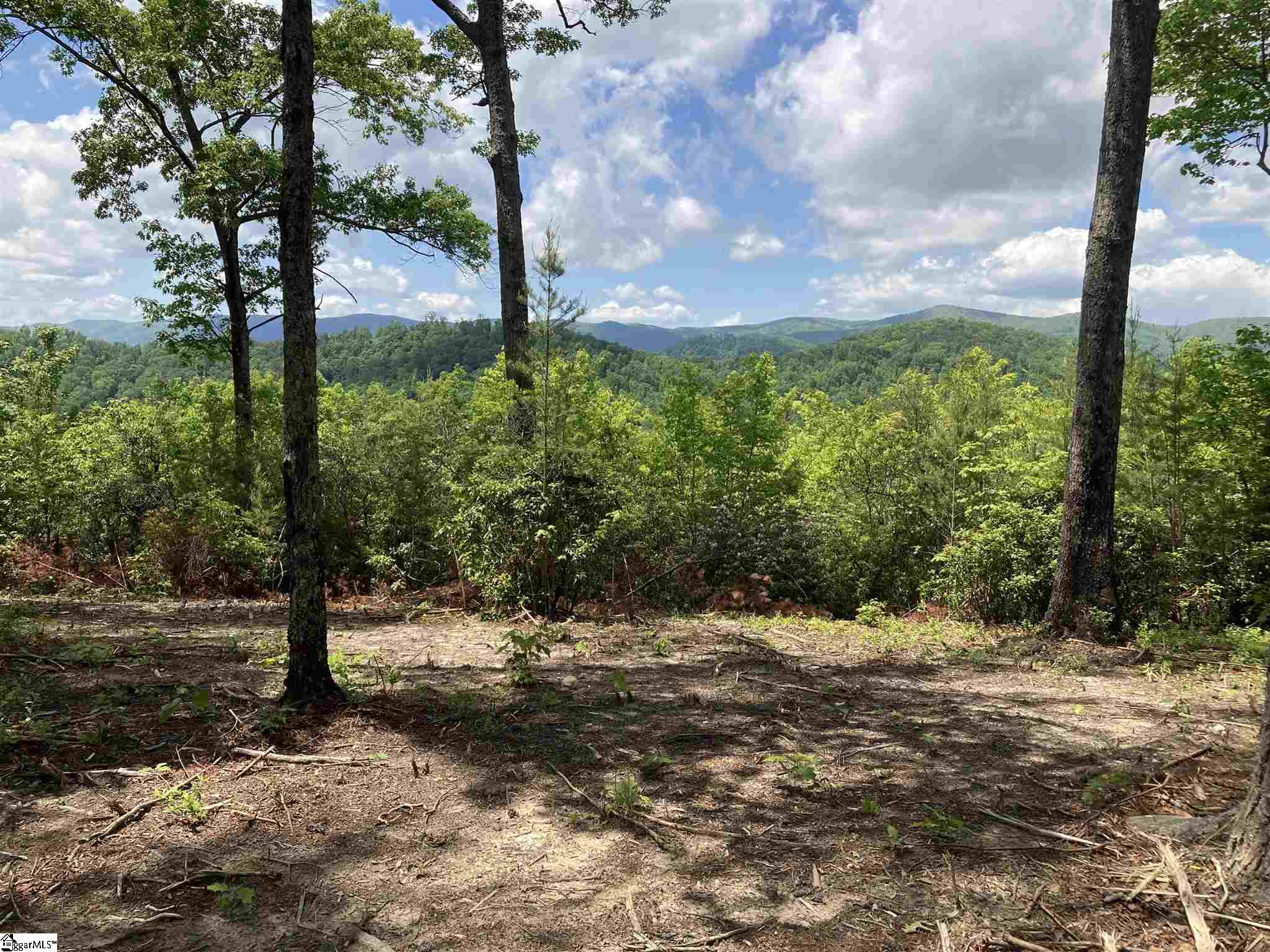 210 Blue Bonnet Trail Marietta, SC 29661