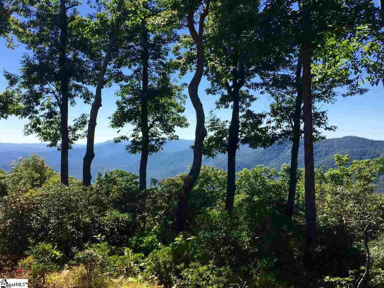 114 Peaceful Night Trail Travelers Rest, SC 29690
