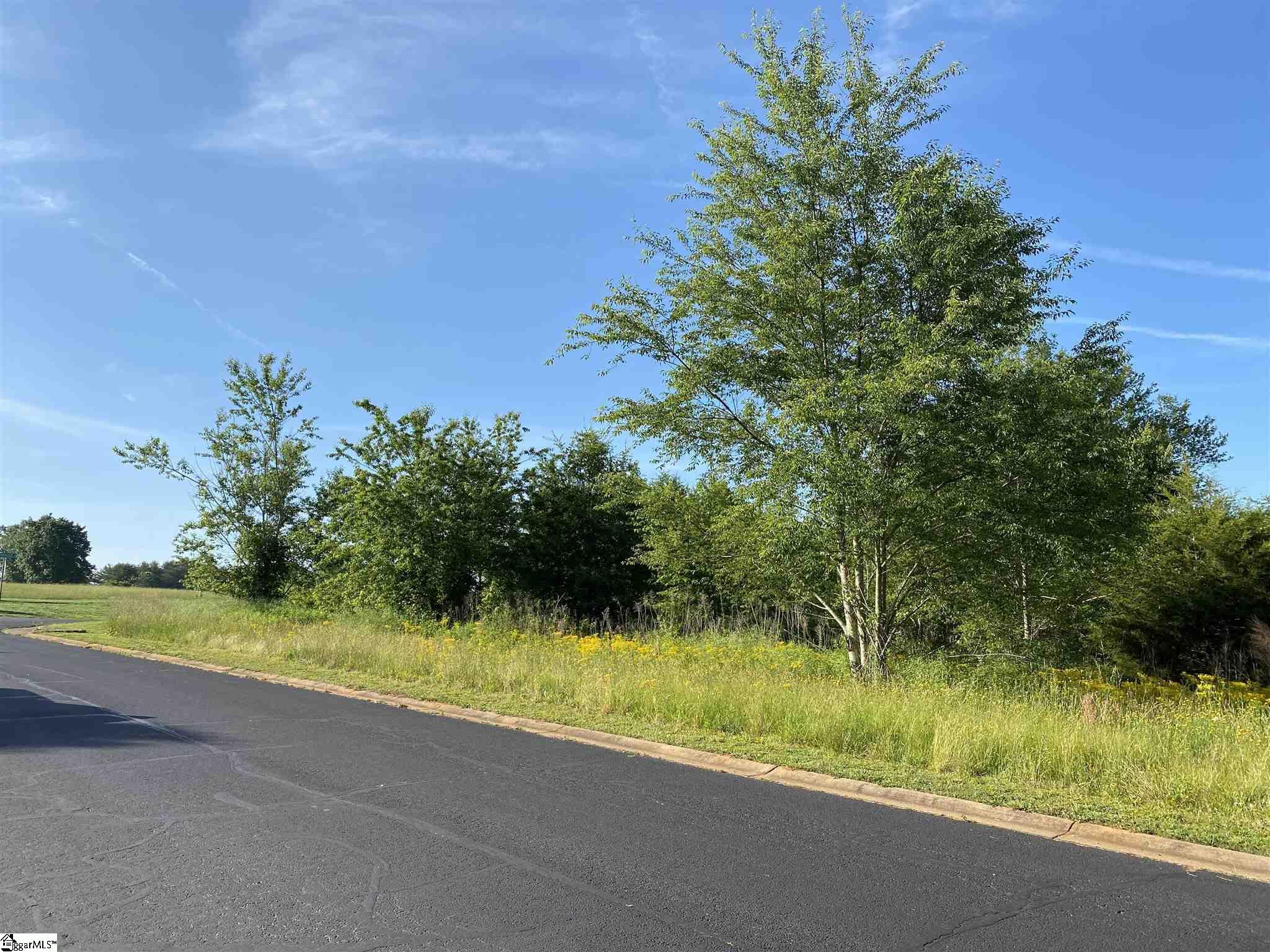 247 Prominence Ridge Drive Chesnee, SC 29323-0001