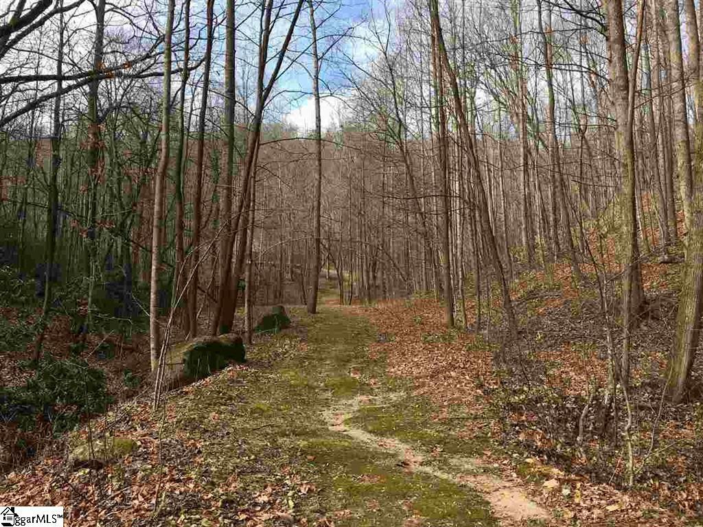 10 Mountain Oak Lane Travelers Rest, SC 29690