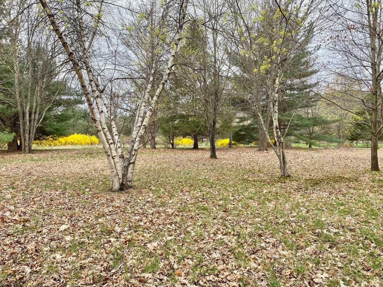 Millbrook NY Real Estate | George T. Whalen Real Estate