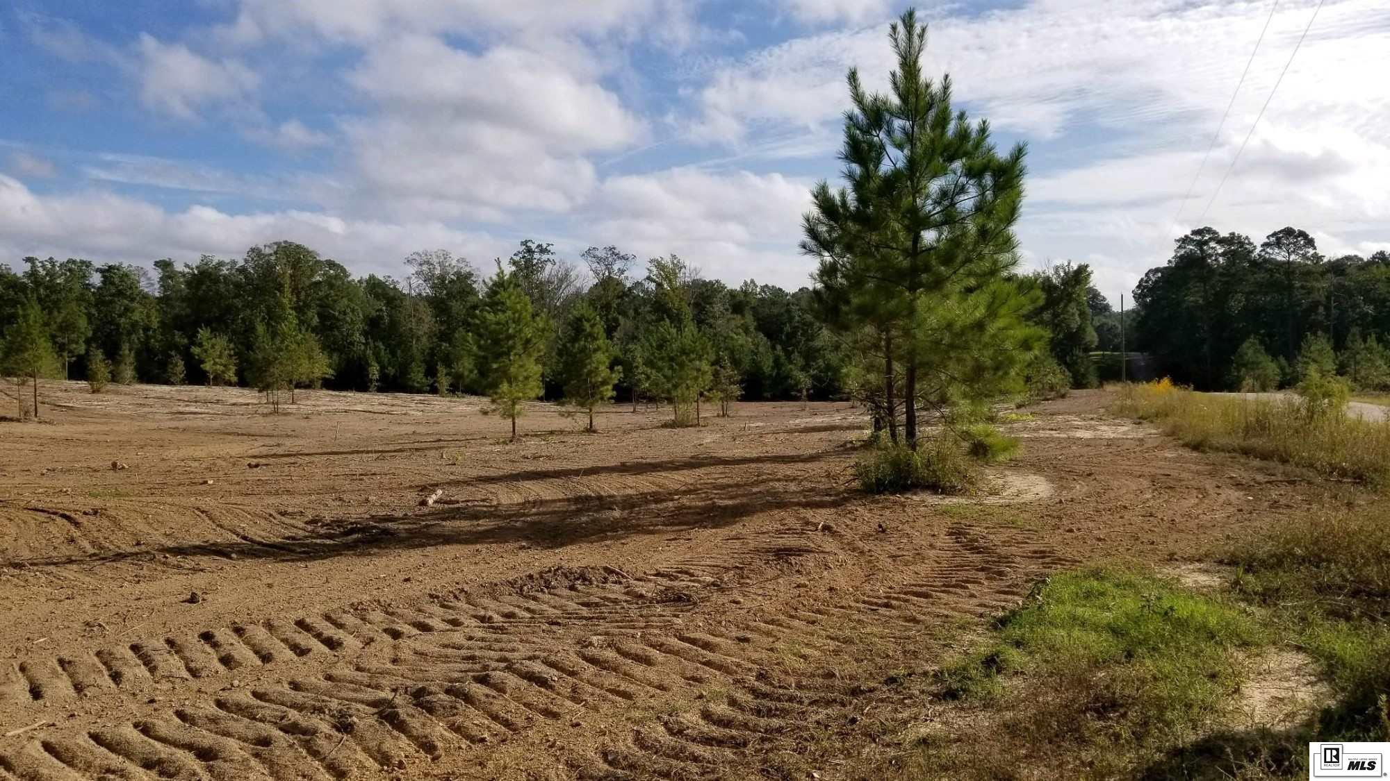 000 New Mineral Springs Road Lot 28