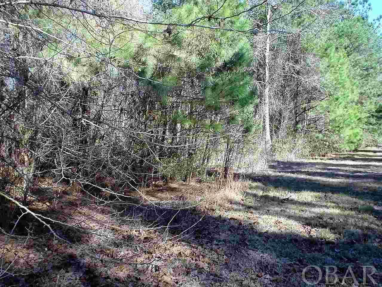 Waterway Drive,Belhaven,NC 28710,Lots/land,Waterway Drive,101305
