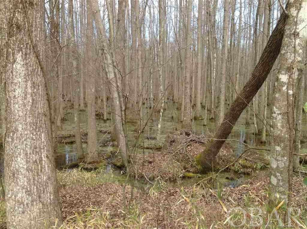 Garrington Island Road, Shiloh, NC 27974, ,Lots/land,For sale,Garrington Island Road,104885
