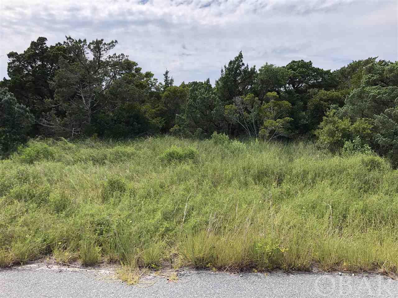 42165 Askins Creek Drive Lot 63, Avon, NC 27915