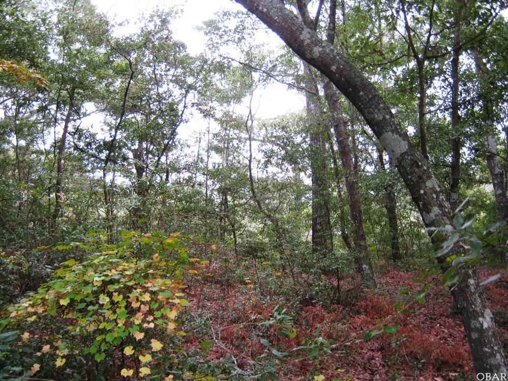 213 Old Holly Lane, Kill Devil Hills, NC 27948, ,Lots/land,For sale,Old Holly Lane,86756