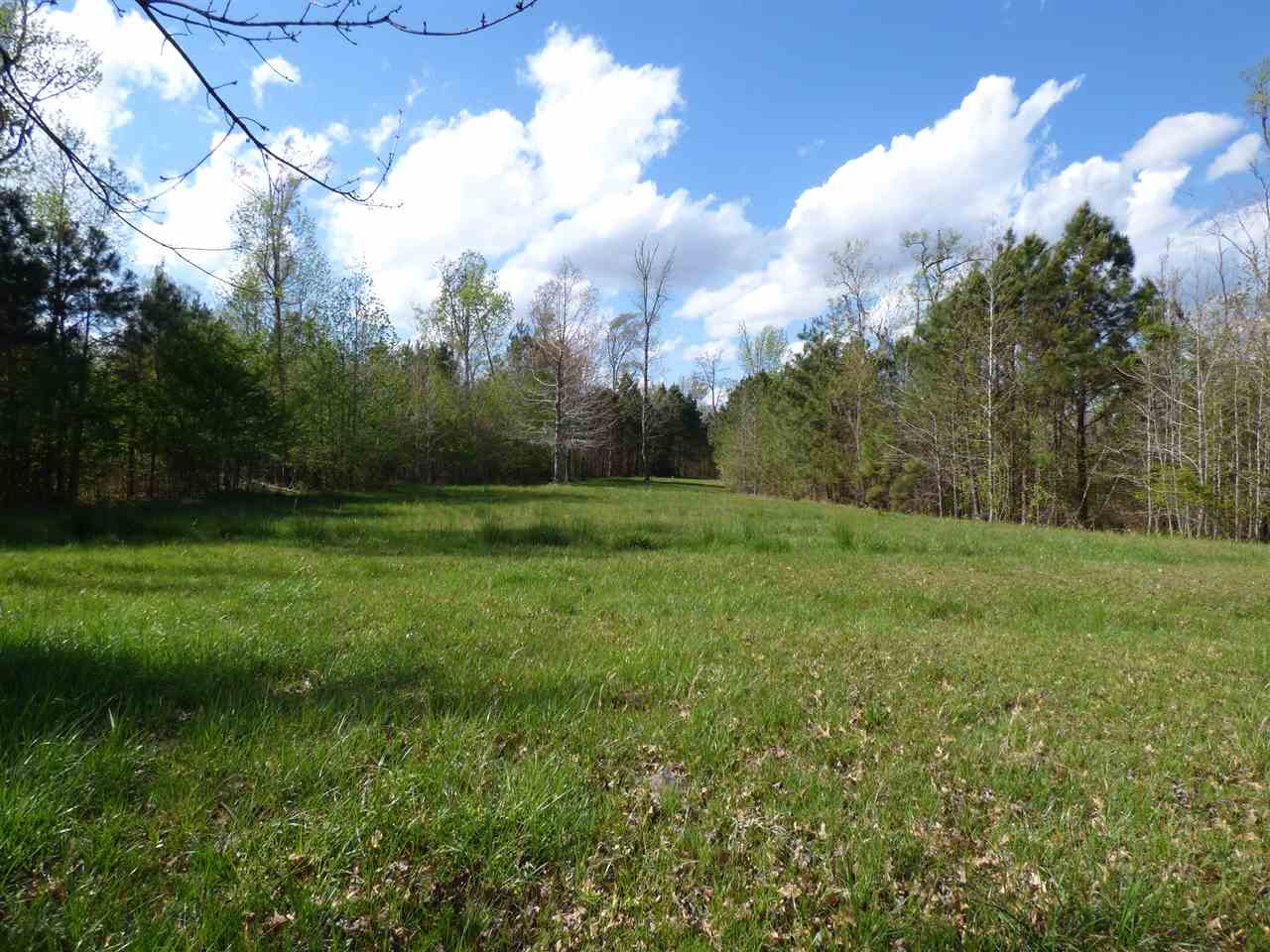211 Osprey Drive, Edenton, NC 27932, ,Lots/land,For sale,Osprey Drive,91911