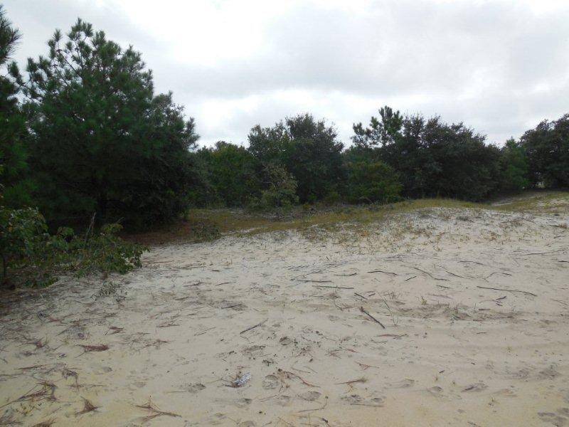 2219 Sailfish Road, Corolla, NC 27927, ,Lots/land,For sale,Sailfish Road,94074