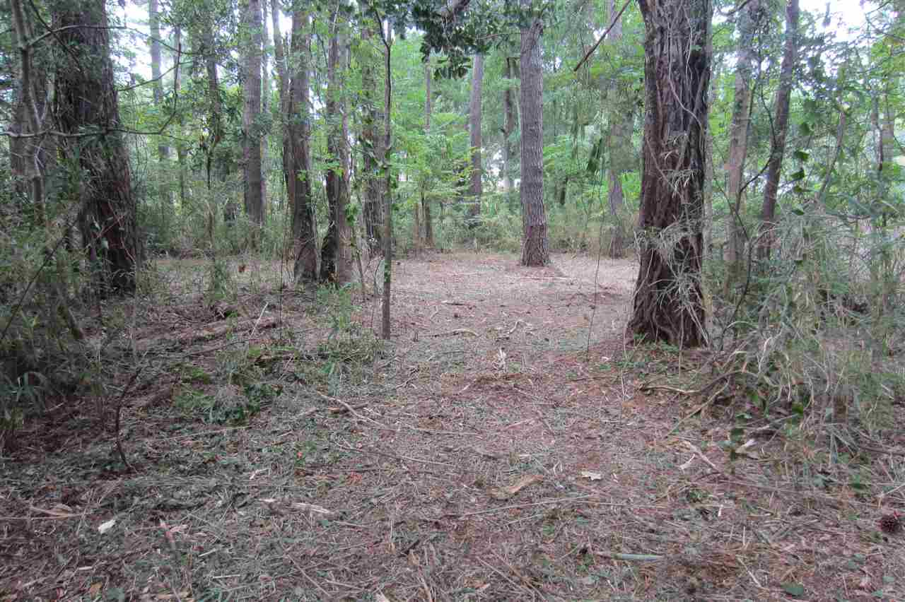 18 Wood Duck Court, Southern Shores, NC 27949, ,Lots/land,For sale,Wood Duck Court,97779