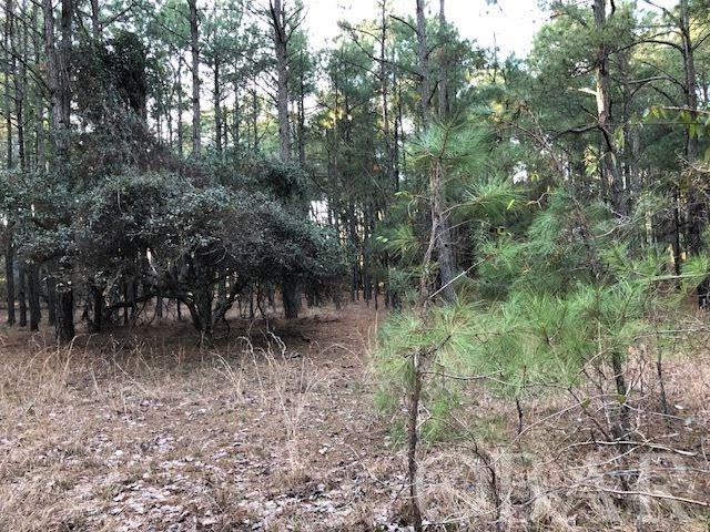 2341 False Cape Road,Corolla,NC 27927,Lots/land,False Cape Road,99666