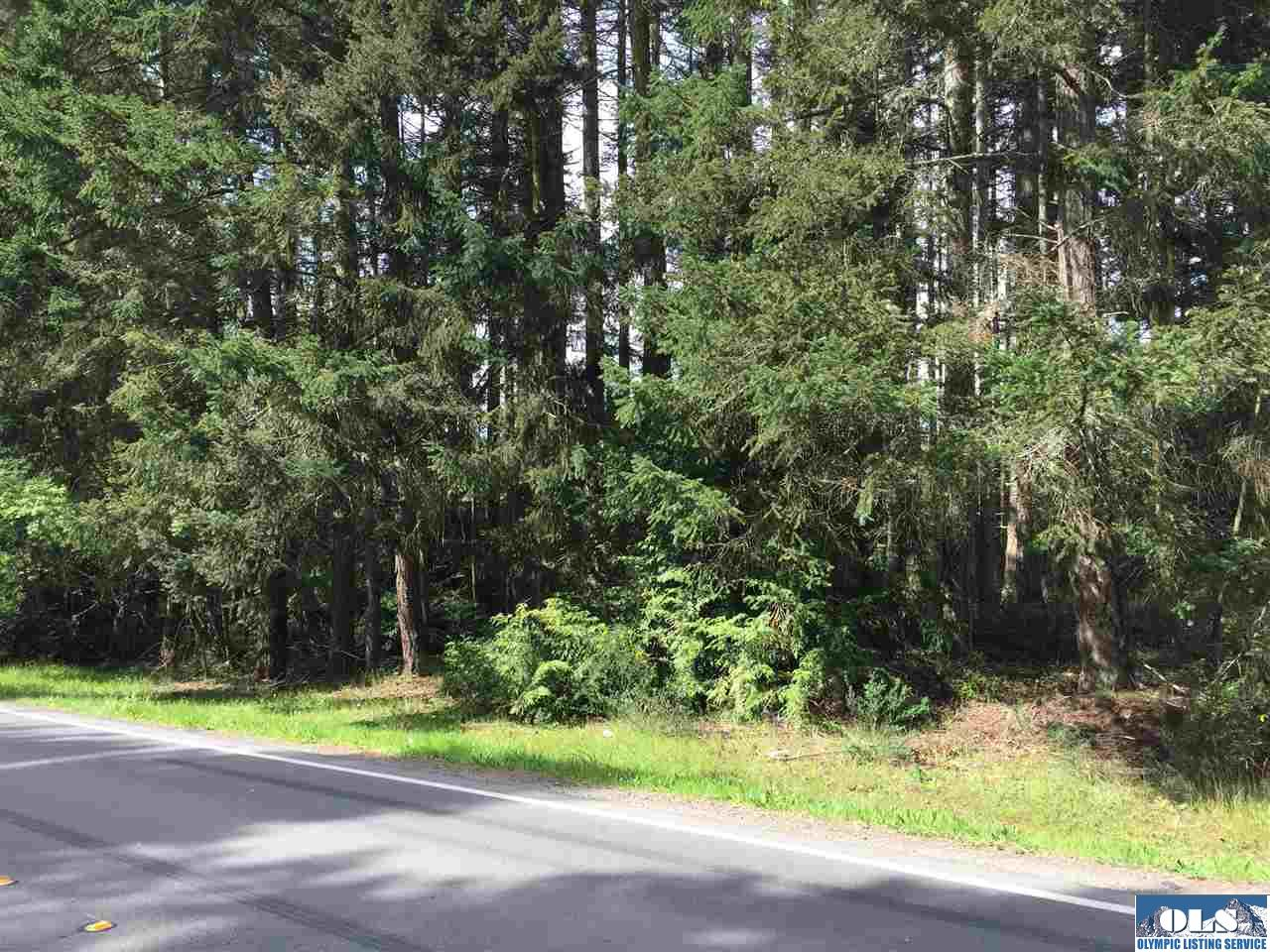 Land and Acreage for Sale on the Olympic Peninsula