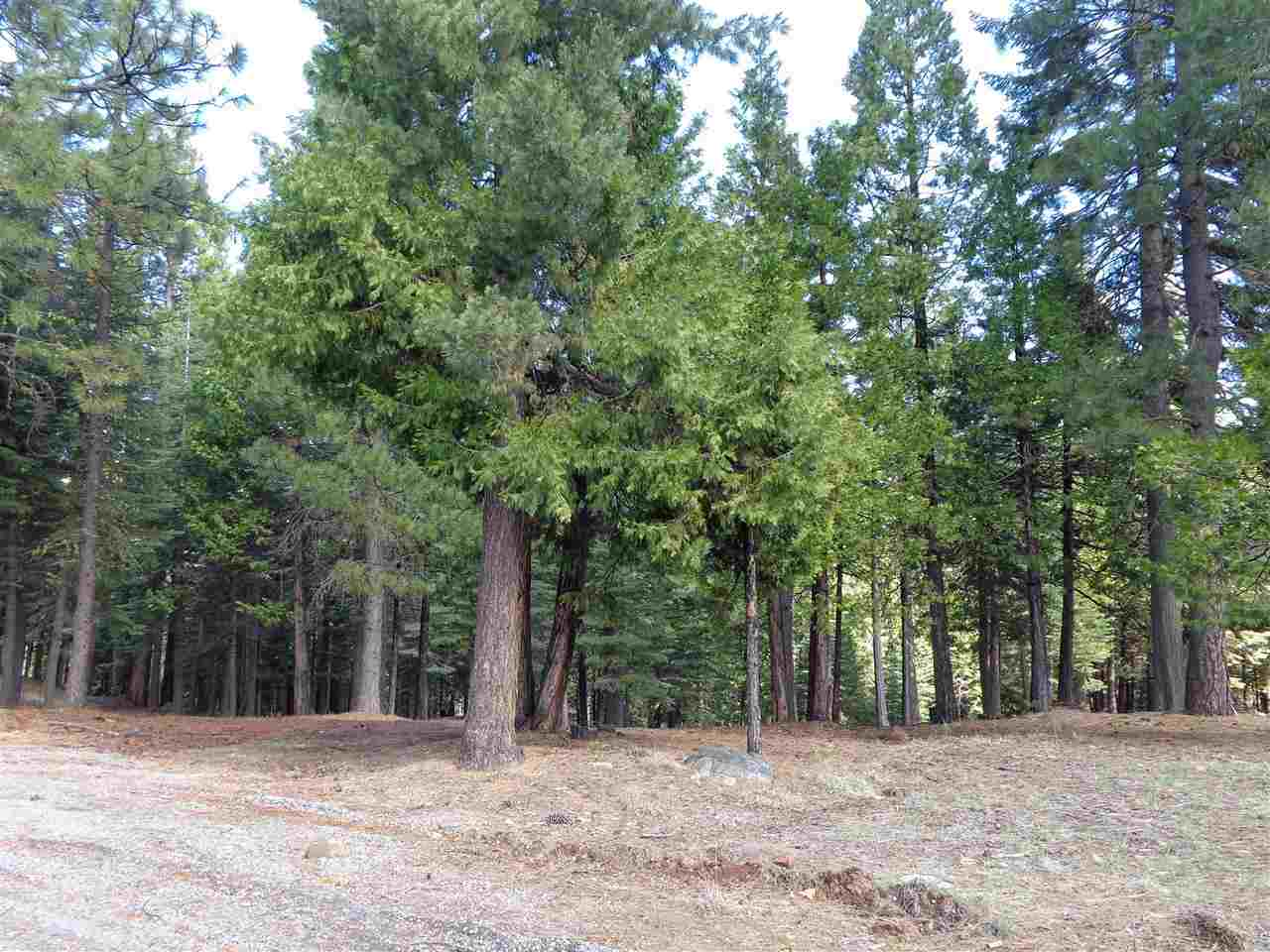 Land for Active at 135 Goose Bay View Trail Chester, California 96020 United States