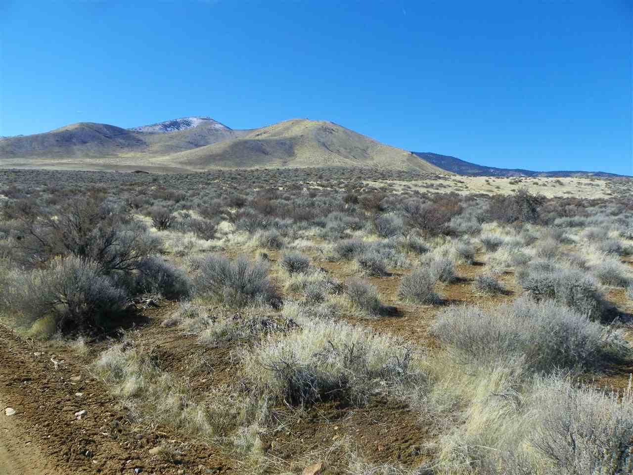 Acreage for Active at Scott Road Chilcoot, California 96105 United States