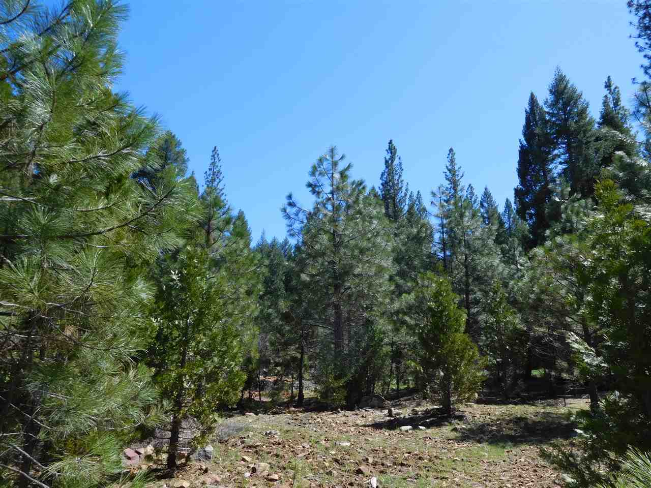Acreage for Active at 663 Hideaway Road Greenville, California 95947 United States