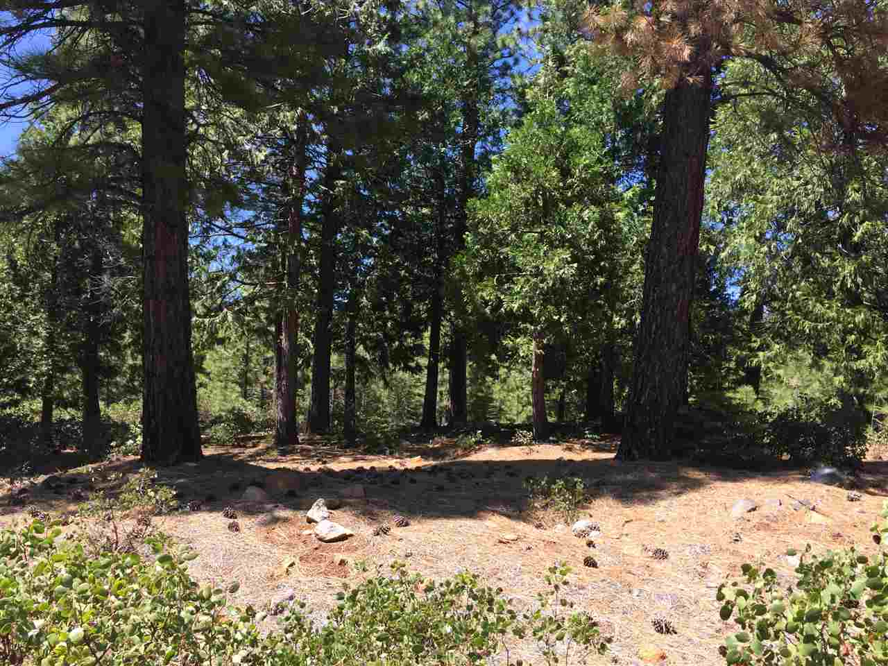 Land for Active at 178 Fox Peak Drive Lake Almanor, California 96137 United States