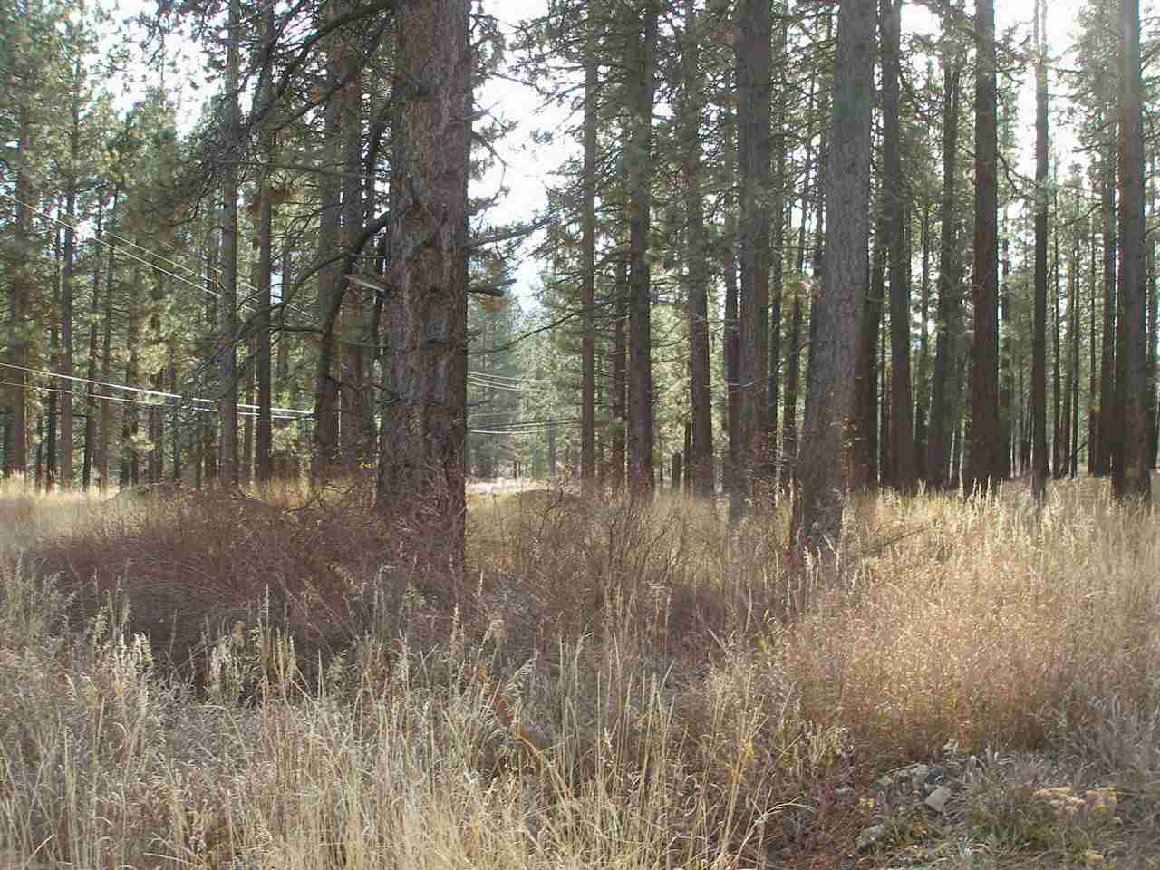 Acreage for Active at 71668 Highway 70 71668 Highway 70 Delleker, California 96122 United States