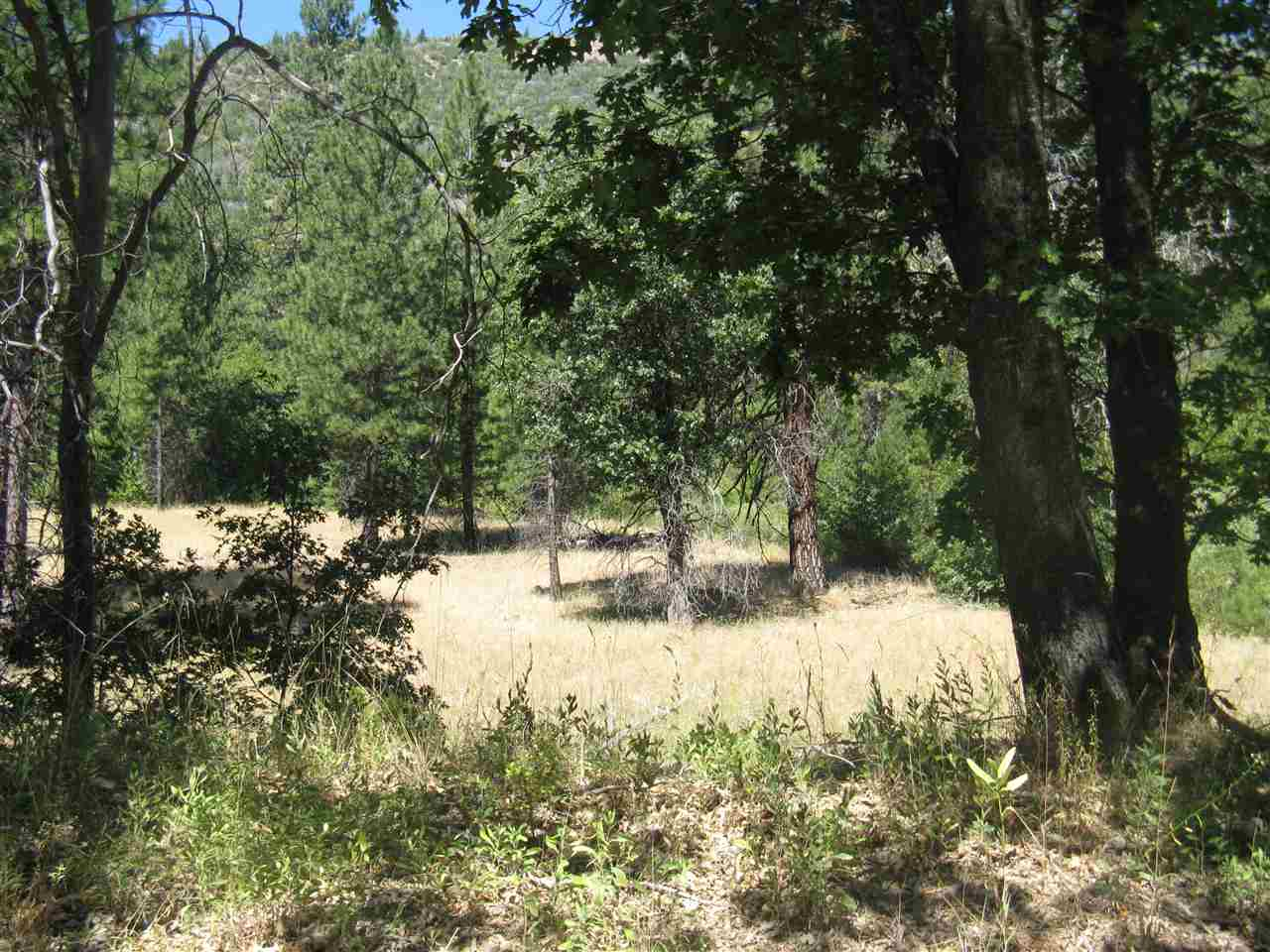 Acreage for Active at 7400 Diamond Mountain Road 7400 Diamond Mountain Road Taylorsville, California 95983 United States