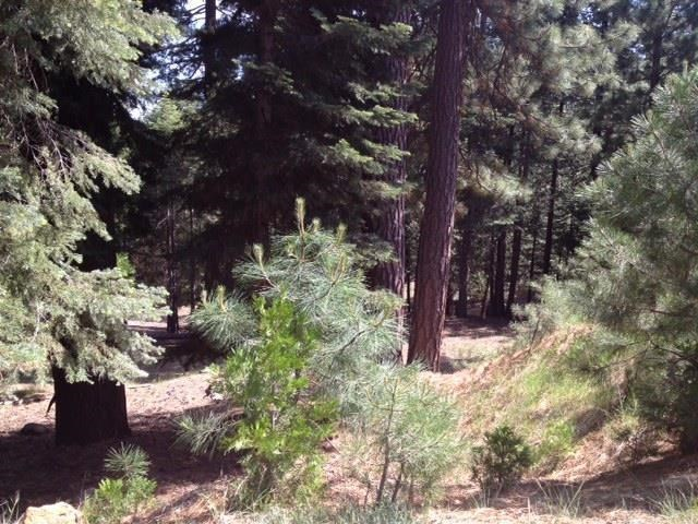 Land for Active at 119 Top of the West Drive Chester, California 96020 United States