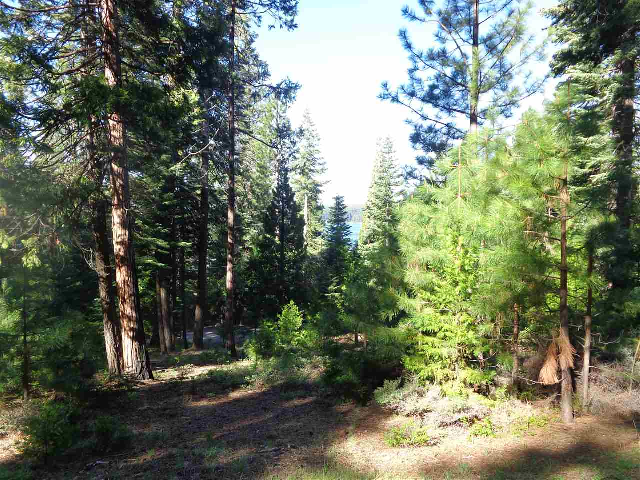 Land for Active at 3059 Big Springs Road Lake Almanor, California 96137 United States