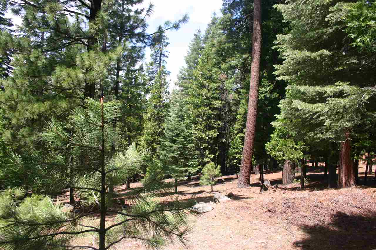 Land for Active at 130 Goose Bay View Trail Chester, California 96020 United States