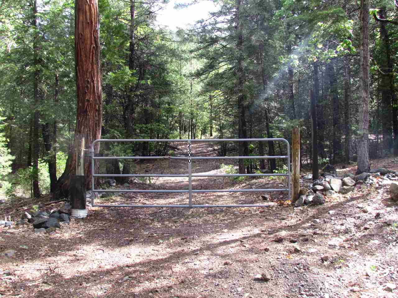 Acreage for Active at 2300 Upper Pecks Valley Road Greenville, California 95947 United States