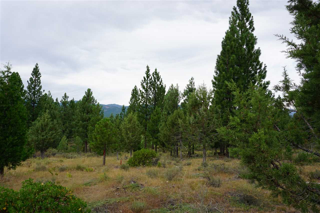 348 Clouds Rest, Clio, CA 96122, MLS # 201800258 | Dickson Realty
