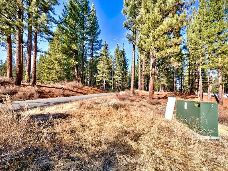 Additional photo for property listing at Parcel 1 Highway 70 Portola, California 96122 United States