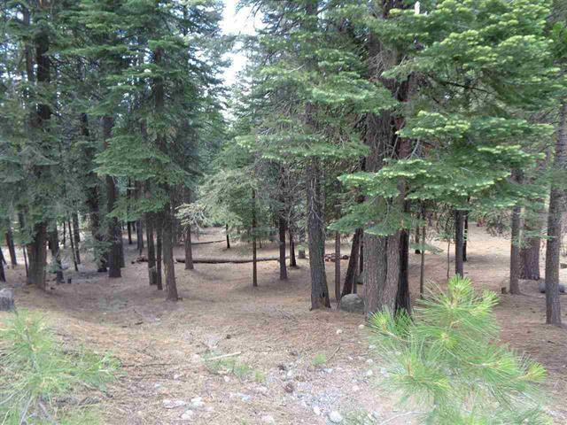 327 Top of the West Drive, Lake Almanor West, CA 96020