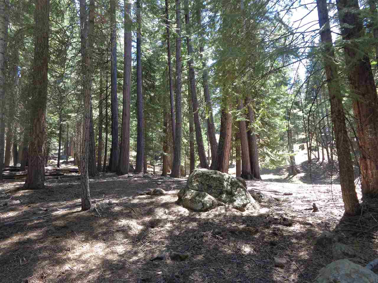 110 Marion Trail 2, Lake Almanor West, CA 96020