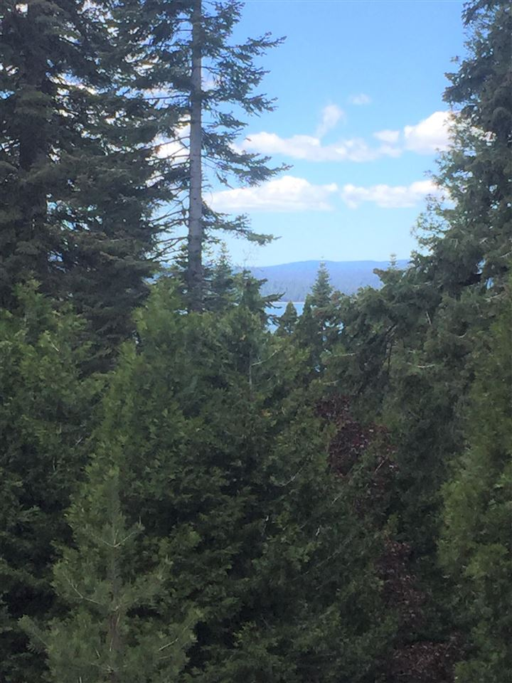725 W Mountain Ridge Road, Lake Almanor, CA 96137