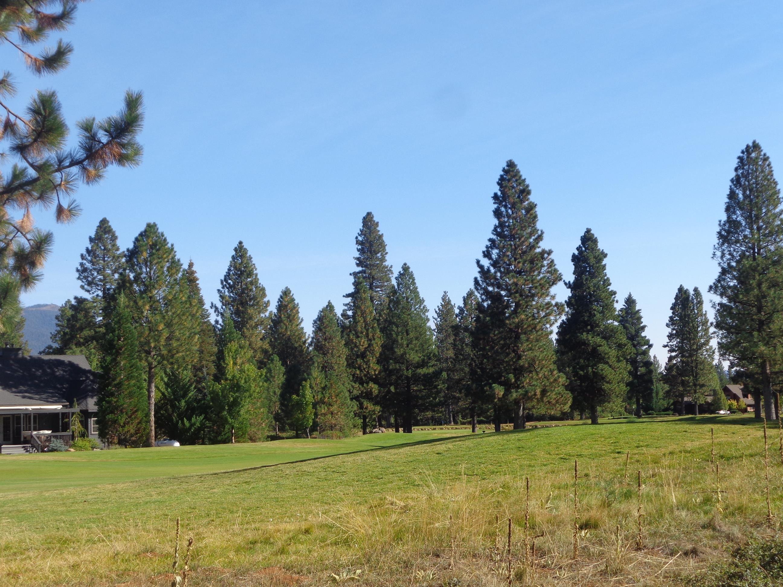 627 Bailey Creek Drive, Lake Almanor, CA 96137