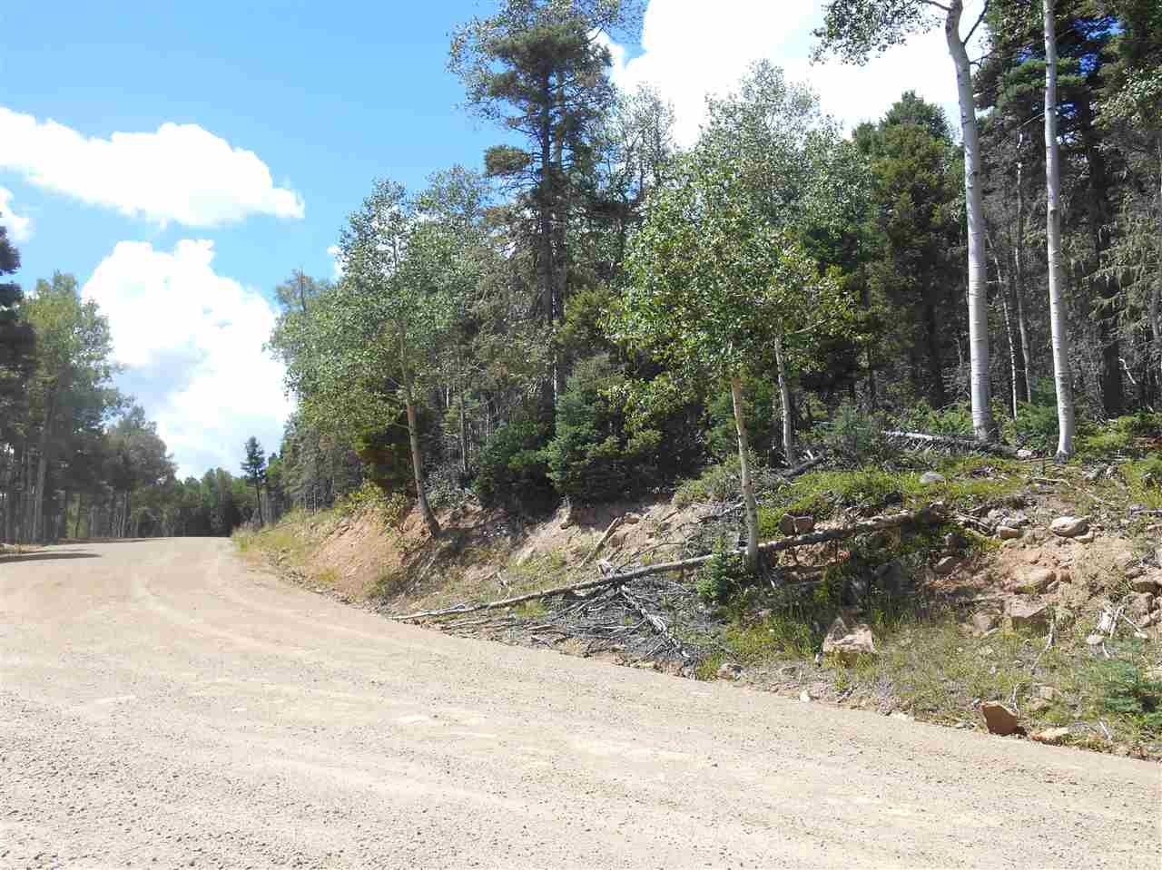 Heavily wooded 1.79 acre lot with various views of east valley rim depending on building site.  Property has nice mix of aspen, pine, blue spruce trees, and mountain vegetation.  Good year-round access via village maintained road.