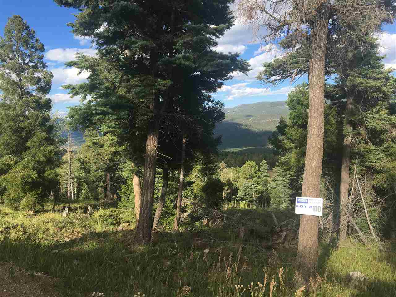 5 build-able acres on Zia Road. Monte Verde Lake, Eagle Nest Lake, Baldy Peak, and Touch-Me-Not Peak views.