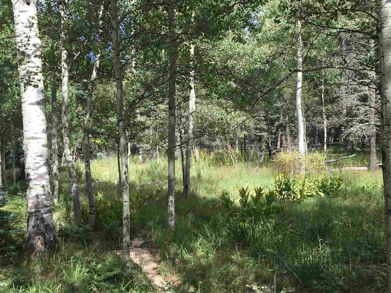 Great, flat lot, easy to build on with 1.28 acres!