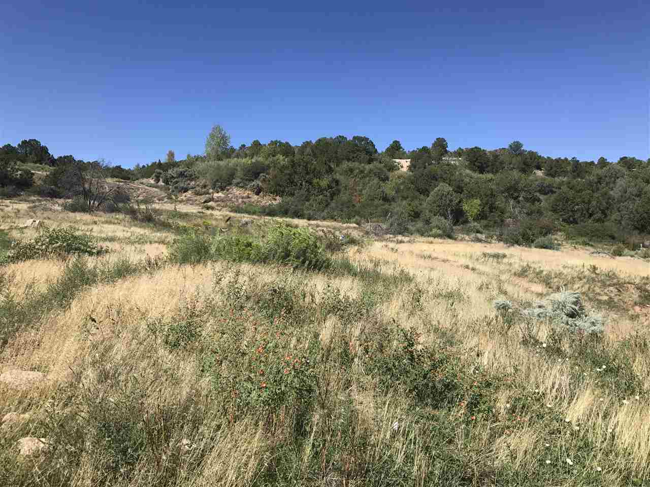 This one acre lot is located off of Vista del Valle in Talpa. To truly see the beauty that surrounds this piece of land, we invite you to come and take a peek. Stand on it, and take in all the amazing views that surround it! To make this lot even sweeter, it does have an irrigation ditch. MLS 100578 up on the ridge also available. Owner willing to owner finance!