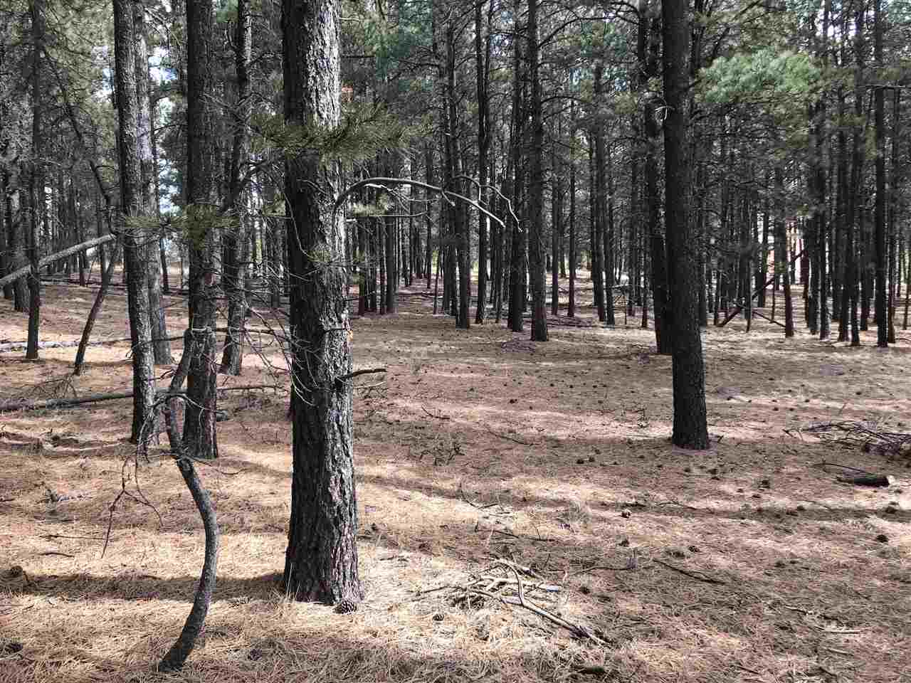 Wooded lot on a cul-de-sac with easy access, close to town, and borders greenbelt.