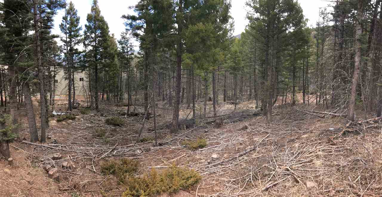 Wonderful lot on popular Vail Loop. This lot has potential views of the Angel Fire Village, Valley,  Eagle Nest Lake and Wheeler Peak depending on the thinning and placement of build. Build on this wonderful lot and make long lasting memories here in Angel Fire.