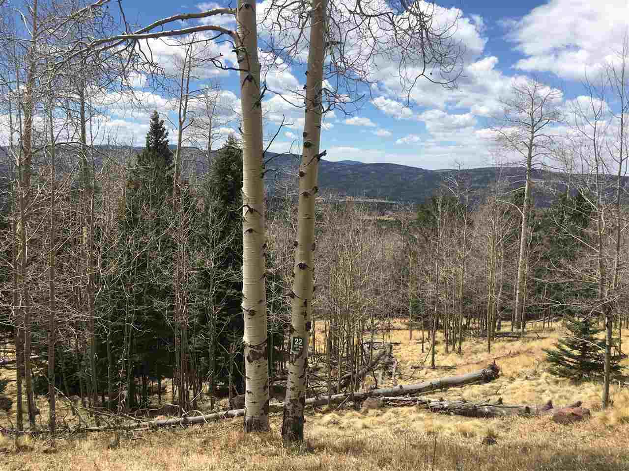 Gorgeous views!  Lot is overlooking Valley of the Utes with beautiful large Aspens and a great building spot. Road is well maintained and easy to get to the property.  Definitely some of the best views in the valley.  Lots of wildlife throughout this area to include heards of elk, deer and the occasional bear.  Perfect spot for your new dream home in the mountains.  Still part of the Village and able to take advantage of the many membership benefits with Angel Fire Resort but secluded enough to make you feel like you are part of the mountains.  2.5 acres of stunning beauty.