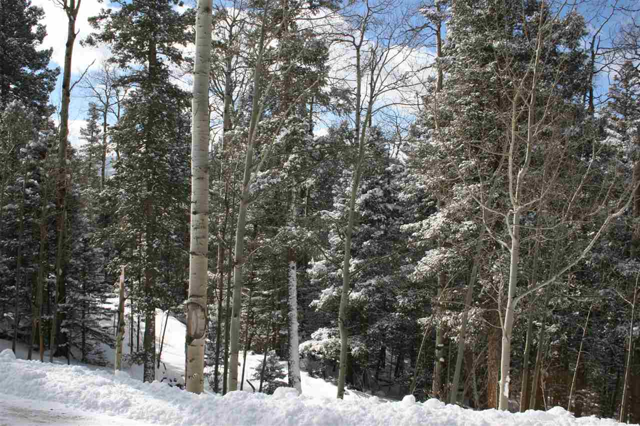 Wonderfully treed lot with southwest views. Easy access on well maintained road. Utilities are at the lot. Would make a great homesite.  Owner has reduced lot for quick sale. We would love to show it to you. Owner/Broker