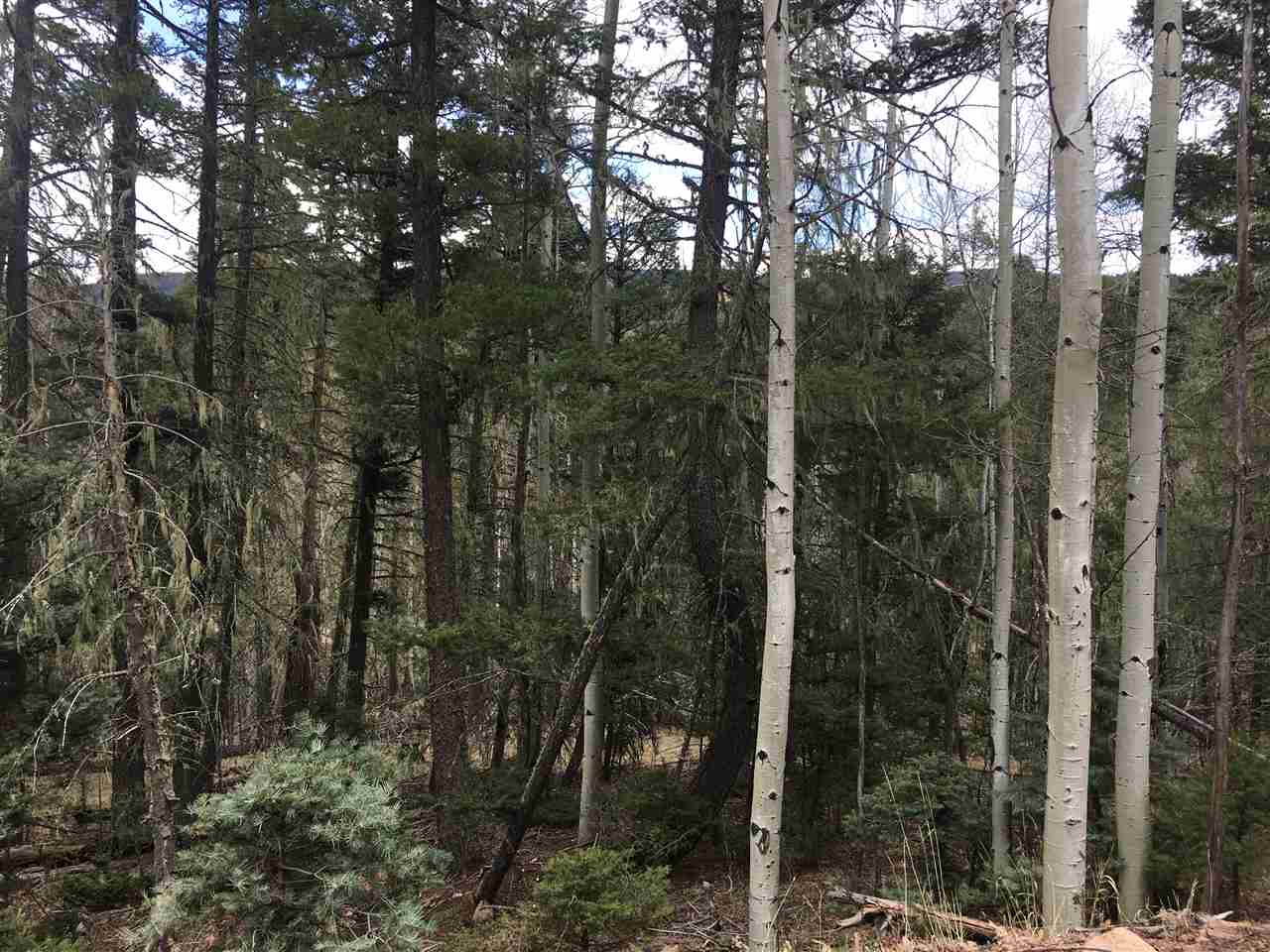 Walking distance to lake, trails, fishing and more! Owner has two adjoining lots for sale - buy one or both for a great parcel of land to build your dream mountain home on.