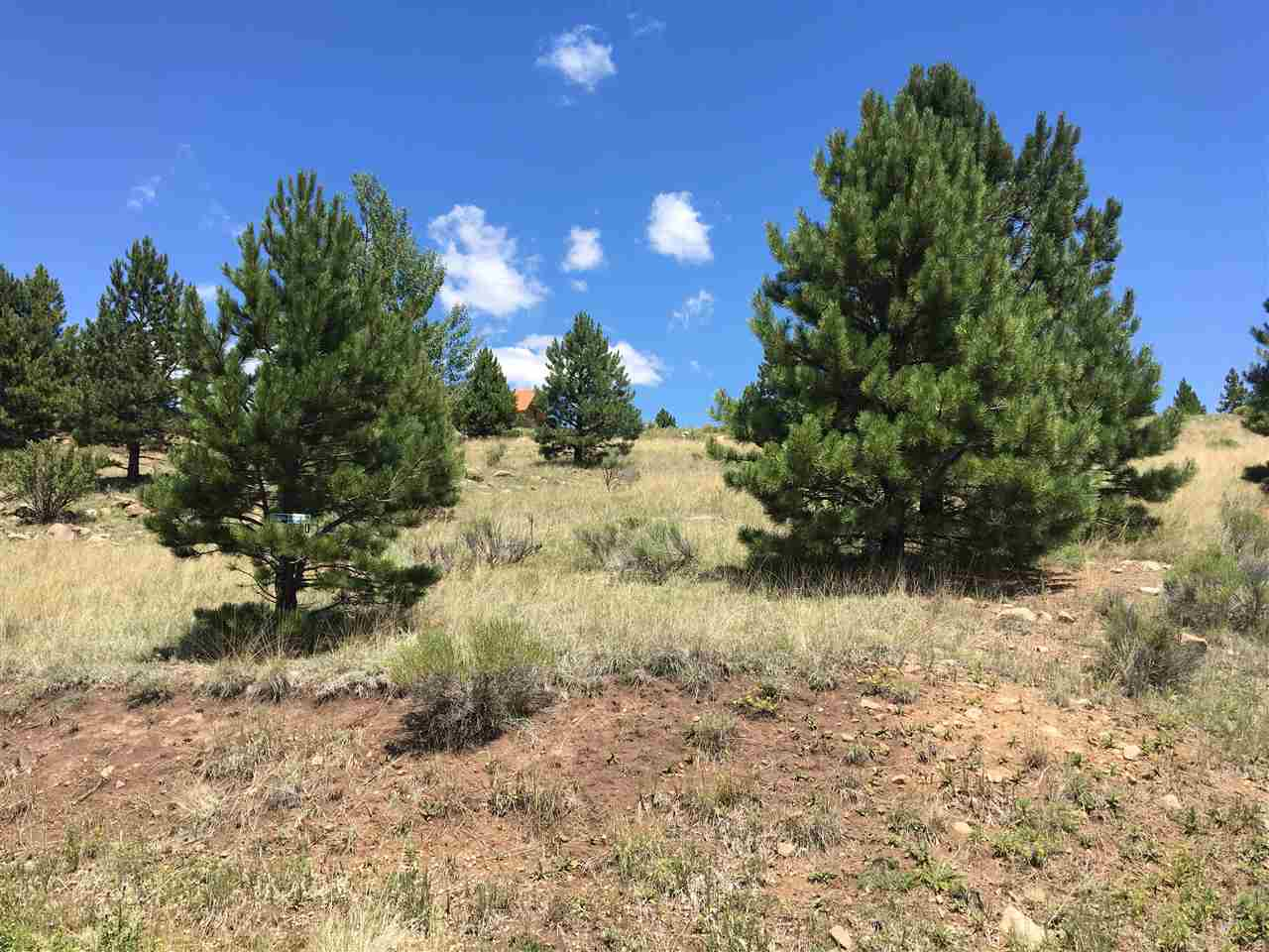 Lot very near the AFR Golf Course and Country Club! Walk to Olympic Park. Short drive to the ski lifts! PID is paid off, improvements are in place! Great build site.