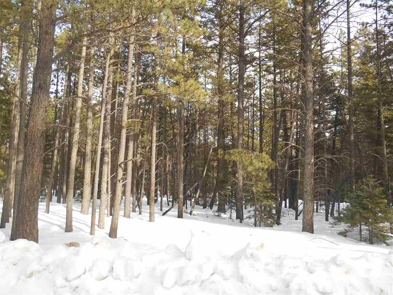 Heavily wooded, 1.175 acre lot, in quiet cul-de-sac with only a couple of houses in cul-de-sac.  Las Cruces Terrance is off of Valle Grande Trail, a paved road leading to center of Angel Fire Village.  Easy year-round access to all amenities of Resort and Village.