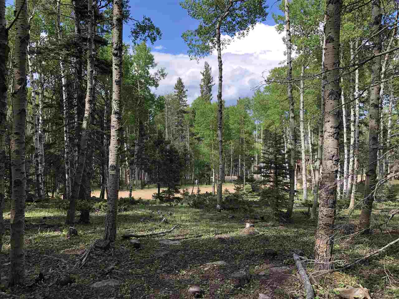 This gorgeous 5.27 acre lot is right in the heart of The Aspens subdivision.  Known for its large acre parcels and positioning near the National forest.  Still within the Village of Angel Fire limits allowing for all the benefits of membership and it's spectacular amenity package.  Lot has been thinned and has several beautiful home sites available.  Build your next mountain dream home in New Mexico's premier ski resort.