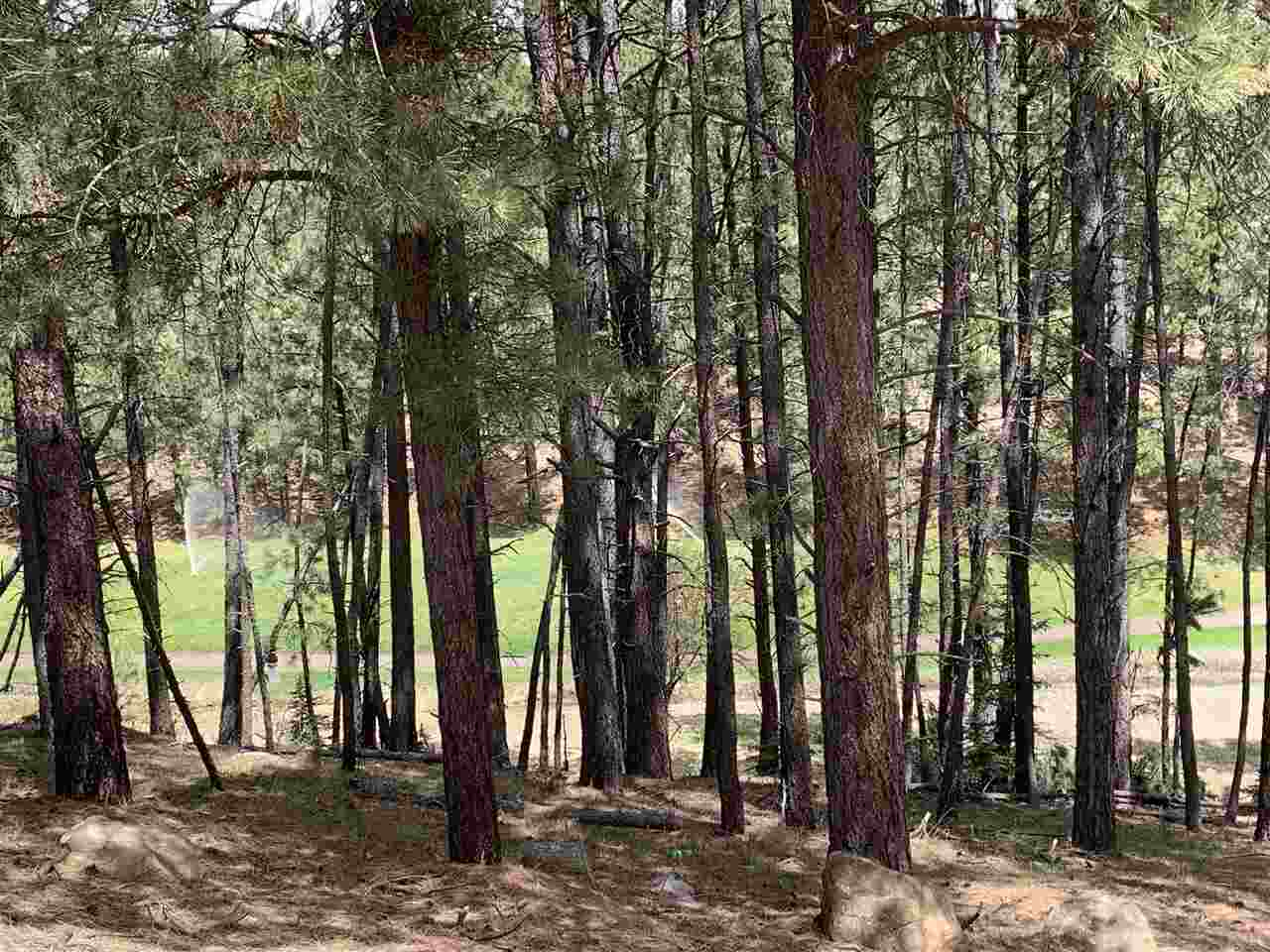 Golf course lot with. 0.47 acre to build on.